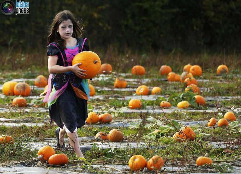 2014 halloween nel mondo 24